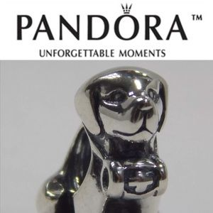 791515 Retired Pandora Mountain Dog Charm
